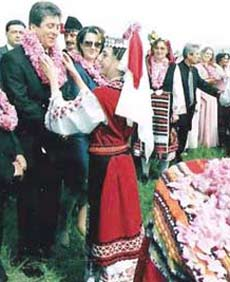 Rose as Symbol of Bulgarian Euro Coin