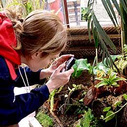 Sofia's Botanical Garden Sees Festive Visitors