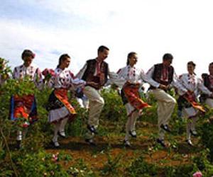 Bulgaria: One Bulgarian Rose
