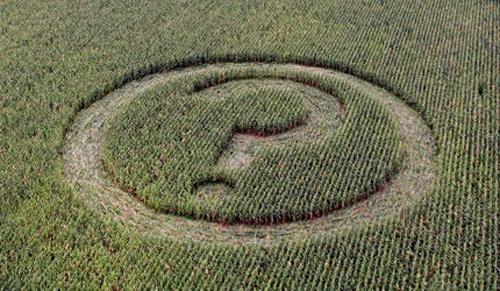Agrolink Director: Bulgaria Agriculture Media Supports GM Crops: Agrolink Director: Bulgaria Agriculture Media Supports GM Crops