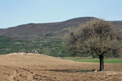 Bulgaria: Bulgarian Archaeologists Uncover Intact Thracian Settlement