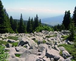 Bulgaria National Icon Vitosha Mountain Park Celebrates 75 Years: Bulgaria National Icon Vitosha Mountain Park Celebrates 75 Years