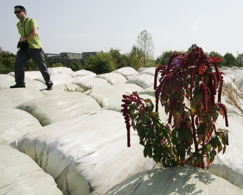 Bulgaria: European Commission Sues Bulgaria over Poor Waste Disposal