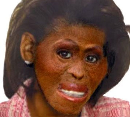 Google Apologizes over Racist Picture of Michelle Obama: Google Apologizes over Racist Picture of Michelle Obama