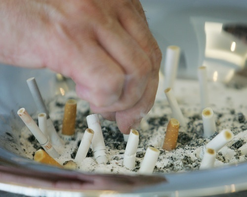 Majority of Bulgarians Support Smoking Ban: Majority of Bulgarians Support Smoking Ban