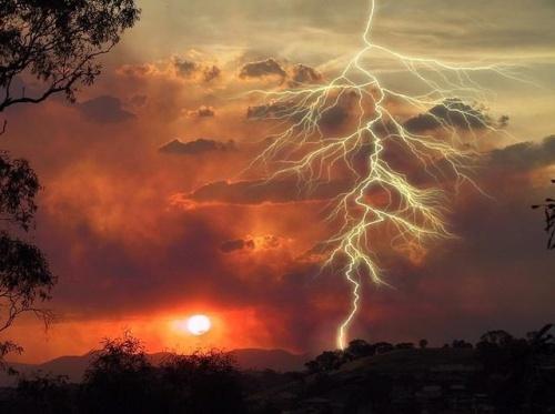 Lightning Kills Bulgarian Shepherd in Ovcharovo: Lightning Kills Bulgarian Shepherd in Ovcharovo