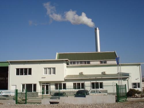 Bulgaria: GDF Suez Mulls EUR 5 M Investment in Biomass Plant in Bulgaria