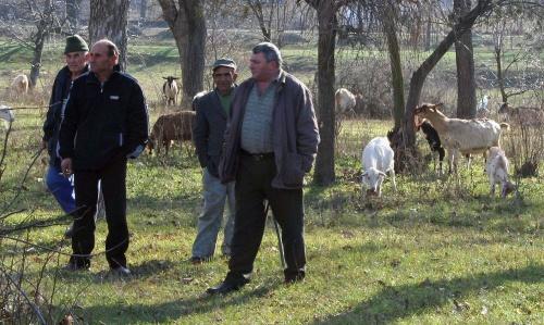 Bulgaria: Bulgarian Farmers to Seek Help for Nitrates until 2013