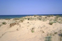 Bulgaria: Bulgaria to Reclaim Black Sea Sand Dunes
