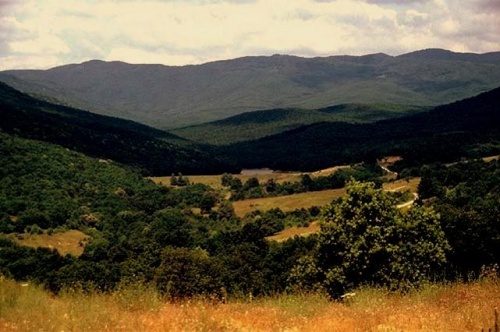 Bulgaria: EU Pressures Bulgaria to Investigate Land Swaps - Report