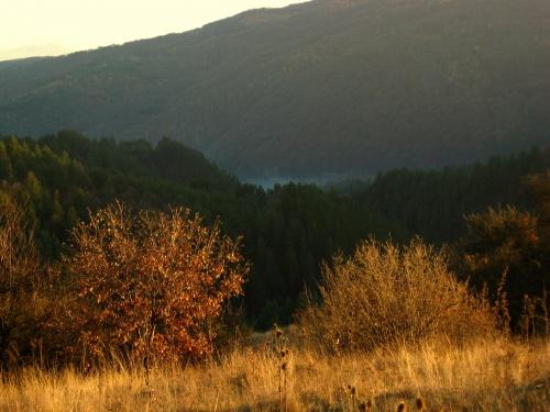 Bulgaria: Bulgarian Fall Heats to Subside Coming Week