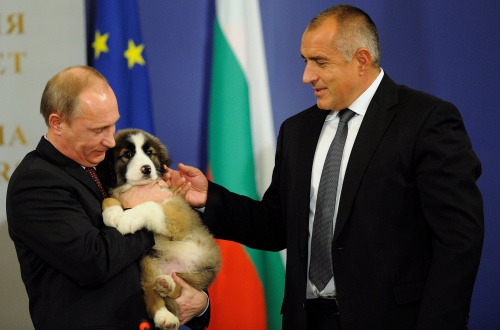 Putin Falls In Love With Bulgarian Pm Borisov S Furry Gift Novinite Com Sofia News Agency