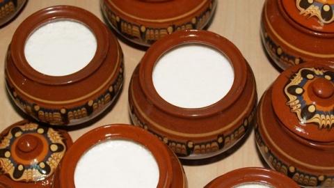 Bulgarian Yoghurt to Be Showcased on Japanese TV: Bulgarian Yoghurt to Be Showcased on Japanese TV