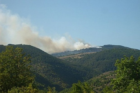 200-Decare Wild Fire Rages in SW Bulgaria: 200-Decare Wild Fire Rages in SW Bulgaria