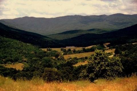 EU Pressures Bulgaria on Land Swaps Probe: EU Pressures Bulgaria on Land Swaps Probe