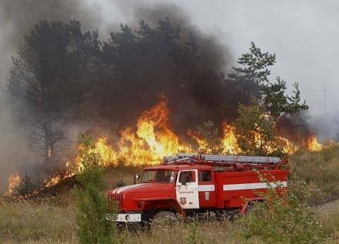Rescue Teams Tame Bulgaria's Winter Wild Fire: Rescue Teams Tame Bulgaria's Winter Wild Fire