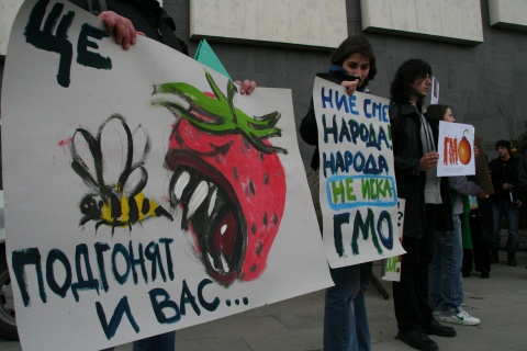 Bulgaria: Unlabeled Animal Feed with Genetically Modified Ingredients on Sale in Bulgaria