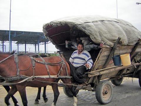 Bulgaria: Agro Program Helps Landless Roma Families in Bulgaria