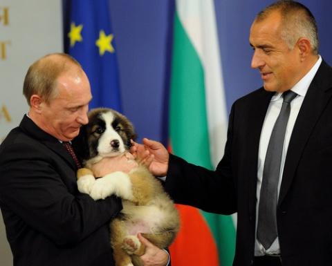 Russian Bulgarian Russian And Bulgarian