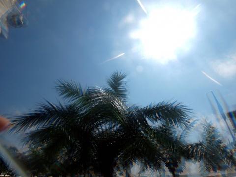 Bulgaria: New Heat Wave Breaks 3 Temperature Records in Bulgaria