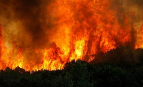 Wildfire Gets Dangerously Close to S Bulgarian Village: Wildfire Gets Dangerously Close to S Bulgarian Village