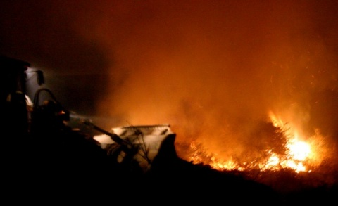 Wildfire Burns 2 Houses in Bulgaria before Being Tamed: Wildfire Burns 2 Houses in Bulgaria before Being Tamed