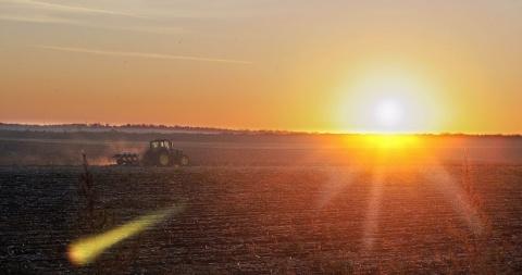 Bulgaria: Bulgarian Farmers Plant Double Wheat Acreage