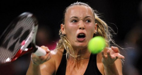 Bulgaria: Wozniacki Hopes for Bulgarian Fans' Support at TOC Final