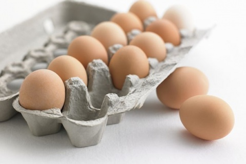 Bulgaria: Bulgaria's 1st Egg Carton Factory to Start Functioning in Jan 2013