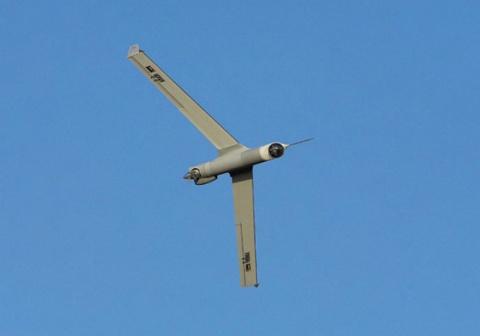 Bulgaria: Iran Downs US Drone over Persian Gulf - Report