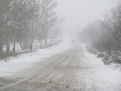 Bulgaria: Blizzard Claims at Least 1 Life in Bulgaria's NE Varna Region