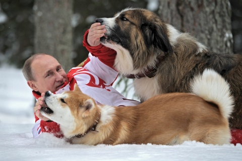 Bulgaria: Fresh Photos Show Putin Enjoying Company of Bulgarian Dog