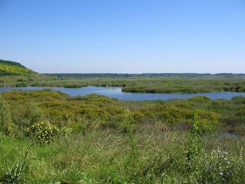 Bulgaria: Bulgaria, Romania to Jointly Manage Danube Wetlands