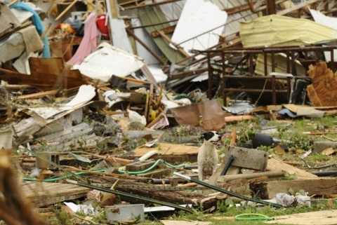 Monster Tornado Kills at least 91 in Oklahoma, US: Monster Tornado Kills at least 91 in Oklahoma, US