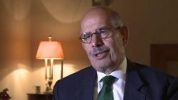 Bulgaria: ElBaradei Not Yet Appointed as Egypt PM - President