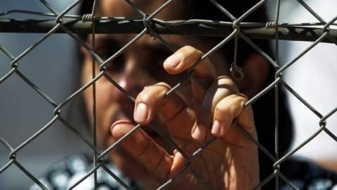 Bulgaria: 31 Syrians Nabbed on Bulgarian-Turkish Border in 24 Hours