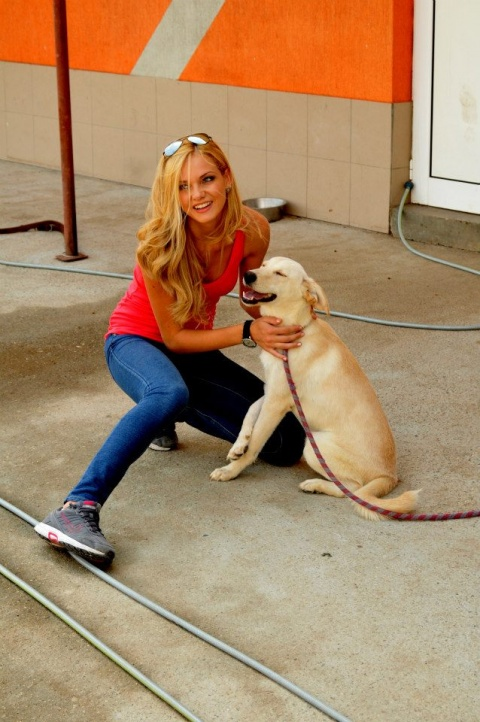 Bulgaria: Miss Bulgaria 2013 Nansi Karaboycheva: Give Hope to Stray Dogs