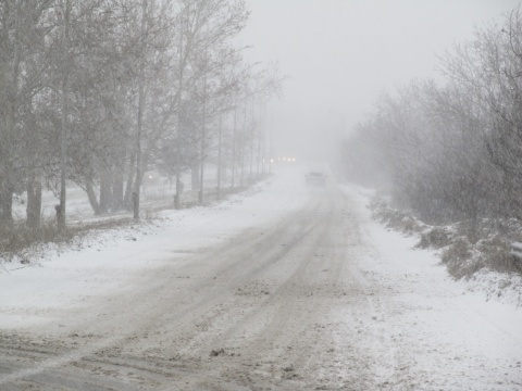 Bulgaria Sees 1st Snow for Winter 2013-2014: Bulgaria Sees 1st Snow