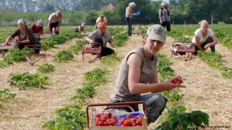 Bulgaria: Britons to Welcome Hard Working Bulgarian, Romanian Migrants - Poll