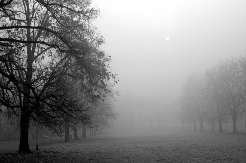 Bulgaria under Code Yellow over Dense Fog: Bulgaria under Code Yellow over Dense Fog