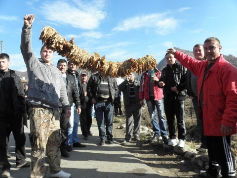 Bulgaria: Bulgaria's Tobacco Growers Stage Rally Against Low Purchase Prices