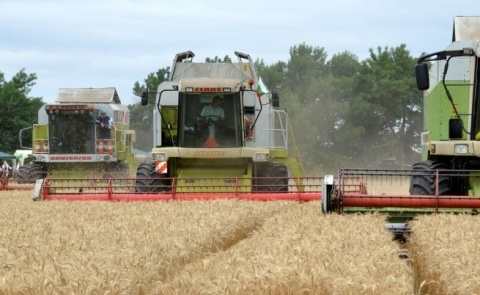 Bulgaria: Price of Agricultural Land in Bulgaria Increased by 8.6% in 2013