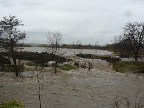 Bulgaria: Floods Cause State of Emergency in 11 Serbian Municipalities