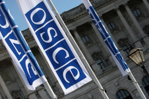 Bulgaria: OSCE Commends Ukraine for Democratic Elections
