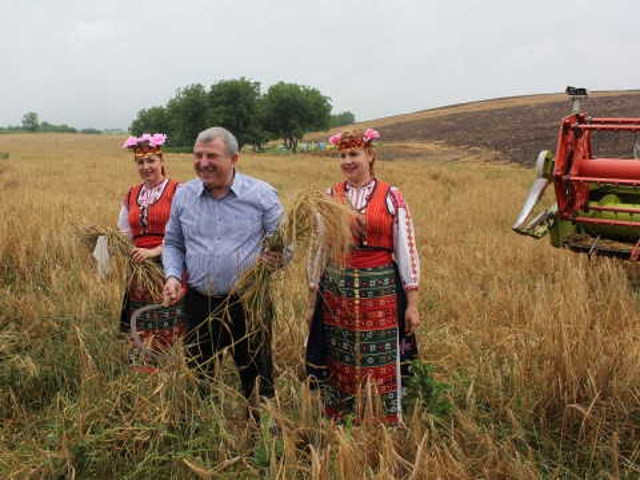 Bulgaria: Record Wheat Yield Expected In Bulgaria