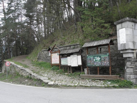 Bulgaria: New Head of  Bulgaria's Executive Forest Agency Appointed