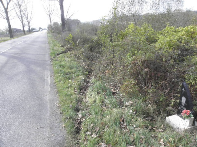 Bulgaria: Car Accident Casualties Increase