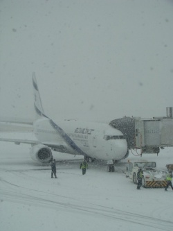 Bulgaria: Over 100 Flights Canceled over Heavy Snow in Moscow