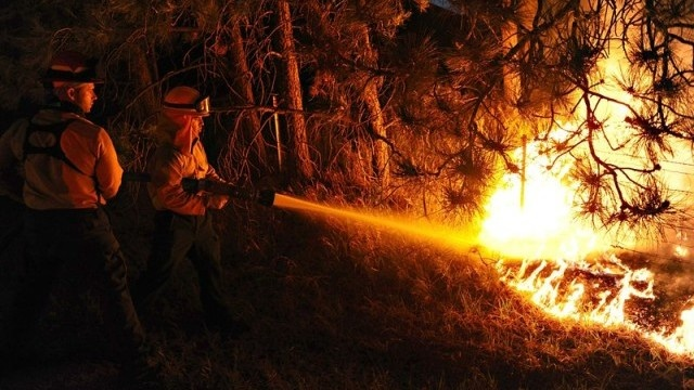 Bulgaria: Forest Fire Damage in Bulgaria since Jan 2015 Estimated at BGN 10 M