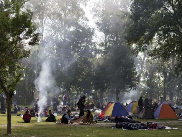 Bulgaria: Turkey Intercepts 87 Refugees Near Border with Bulgaria, Greece